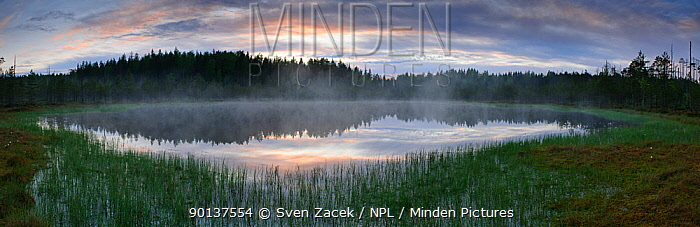Panoramic view of winter sunset over wetland bog, with reflections, Estonia, digital composite  -  Sven Zacek/ npl