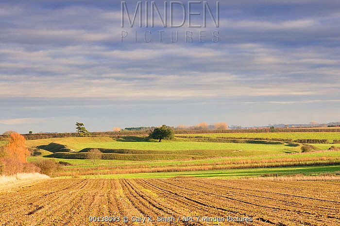Arable fields with Warham Camp Iron age hillfort in the distance, UK, December 2009  -  Gary K. Smith/ npl