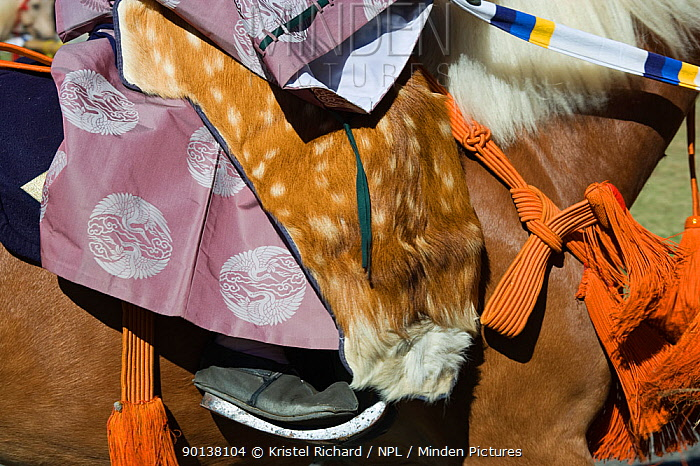 Details of saddle and costume of a traditionally dressed samurai (warrior) from the Takeda School of Horseback Archery, during a Yabusame (Japanese mounted archery), at Meiji Jingu Shrine, Tokyo, Tokyo Prefecture, Japan 2009  -  Kristel Richard/ npl