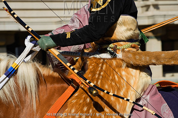 Details of costume of a traditionally dressed samurai (warrior) from the Takeda School of Horseback Archery with bows and arrows, during a Yabusame (Japanese mounted archery), at Meiji Jingu Shrine, Tokyo, Tokyo Prefecture, Japan 2009  -  Kristel Richard/ npl