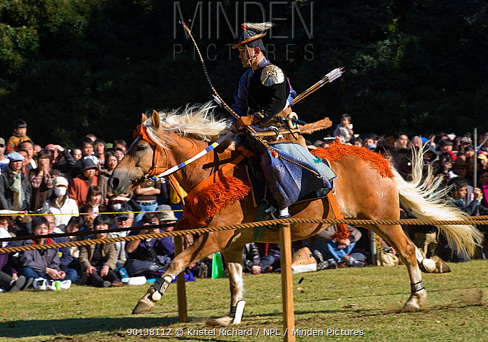 A traditionally dressed samurai (warrior) from the Takeda School of Horseback Archery with bows and arrows parades on a horse, during a Yabusame (Japanese mounted archery), at Meiji Jingu Shrine, Tokyo, Tokyo Prefecture, Japan 2009  -  Kristel Richard/ npl