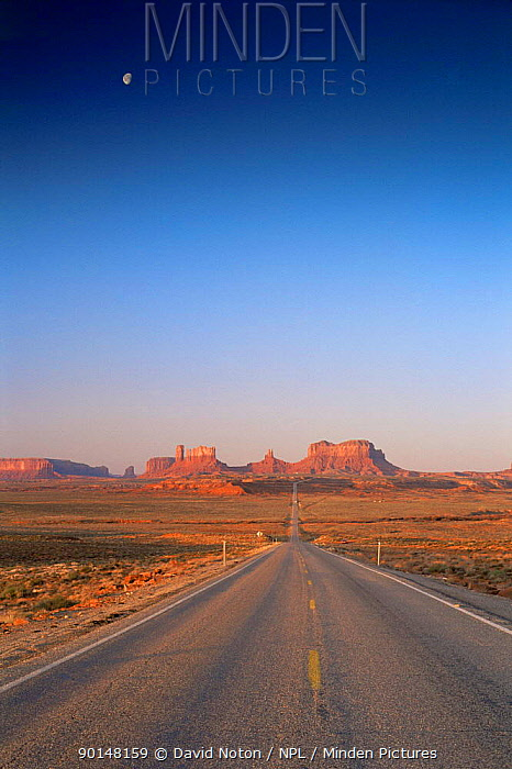 Moon high above disappearing road into Monument Valley Tribal Reserve, Utah, USA  -  David Noton/ npl