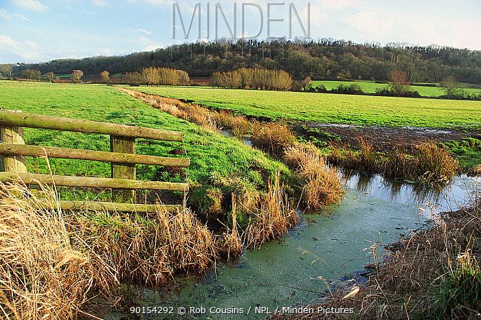 Somerset levels, Somerset, UK  -  Rob Cousins/ npl