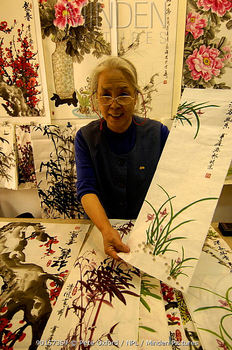 Chinese painting, traditionally done using a brush on paper Old neighbourhood of Beijing, China 2006  -  Pete Oxford/ npl