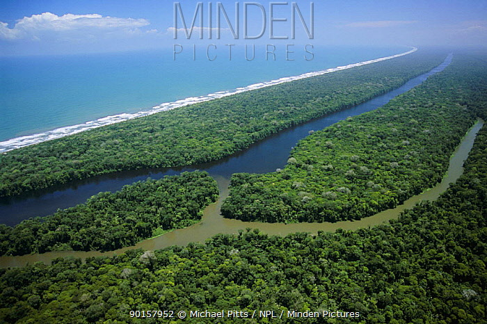 Aerial view of 'canal' and Caribbean coastline, Tortuguero NP, Costa Rica, Central America 2006  -  Michael Pitts/ npl