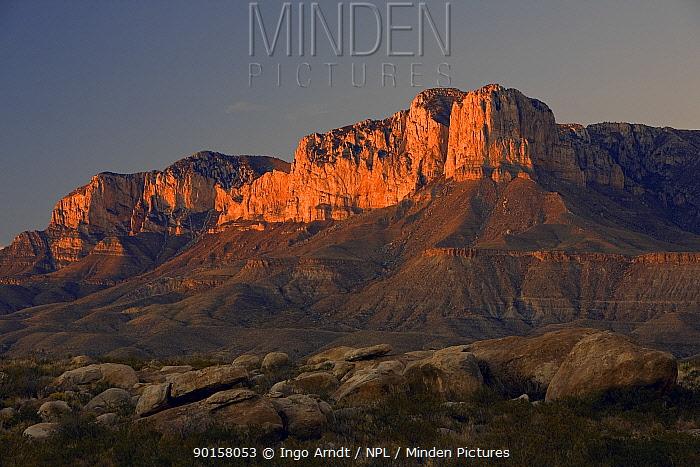 El Capitan at sunset, Guadalupe Mountains National Park, Texas, USA  -  Ingo Arndt/ npl