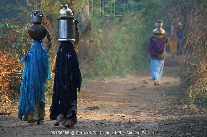 Women carrying water from village well, Keoladeo Ghana NP, Bharatpur, Rajasthan, India  -  Bernard Castelein/ npl