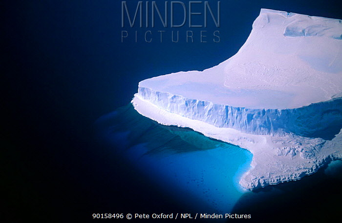 Iceberg, Bergy Bit, Cape Darnley, Australian Antarctic Territory  -  Pete Oxford/ npl