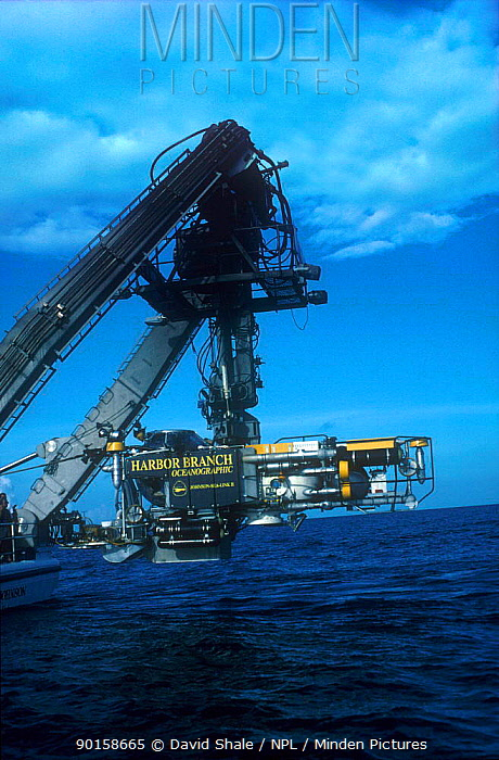 Johnson Sealink II submersible being lowered into the sea, one of the few craft in the world capable of reaching depths of 1,000 metres Filming for BBC tv series Blue Planet about life in the oceans  -  David Shale/ npl