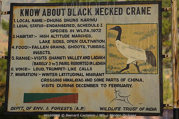 Information board on Black-necked Cranes (Grus nigricollis) Shangti Valley, Arunachal Pradesh, India 2005  -  Bernard Castelein/ npl