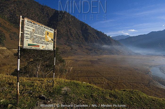 Information board on Black-necked Cranes (Grus nigricollis), Shangti Valley, Arunachal Pradesh, India 2005  -  Bernard Castelein/ npl