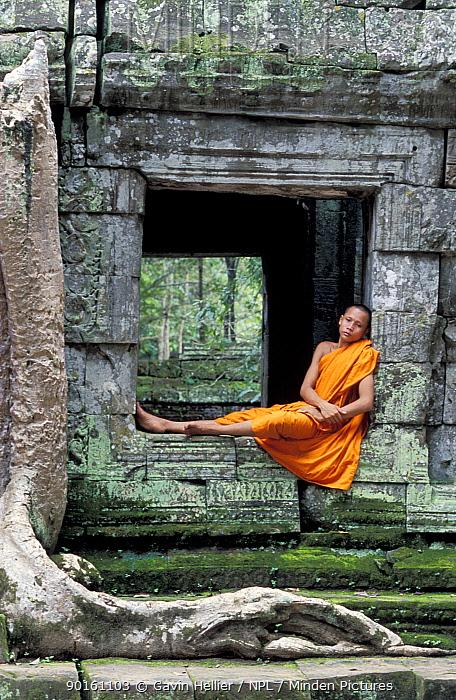 Buddhist Monk sitting in Ta Prohm Temple, Angkor, World Heritage Site, Cambodia  -  Gavin Hellier/ npl