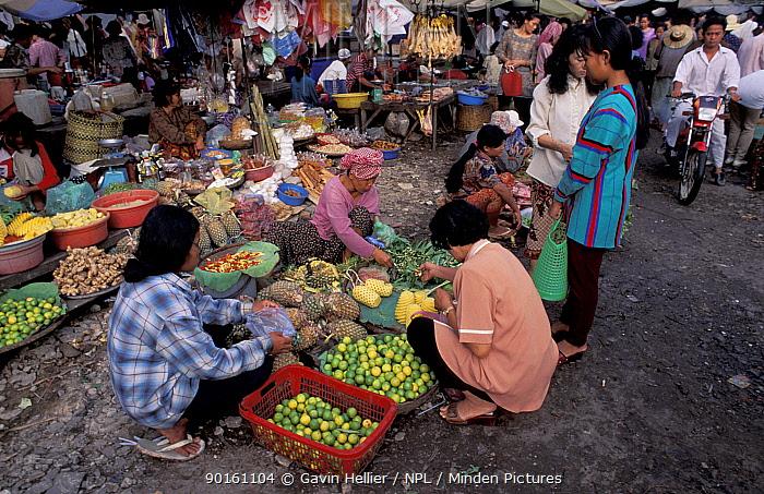 People buying fruit at local market, Phnom Penh Cambodia  -  Gavin Hellier/ npl