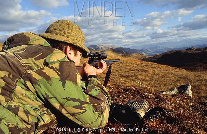 Deer stalker with gun waiting for deer to appear over ridge Knoydart, Scotland, UK  -  Pete Cairns/ npl