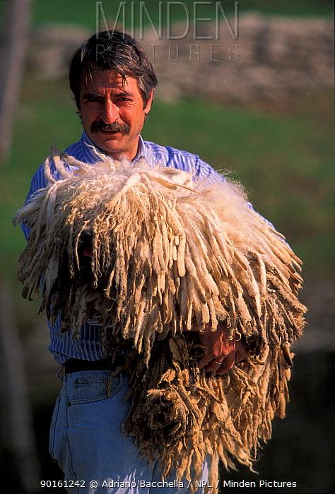 Man carrying domestic dog, Puli, Hungarian Water Dog  -  Adriano Bacchella/ npl