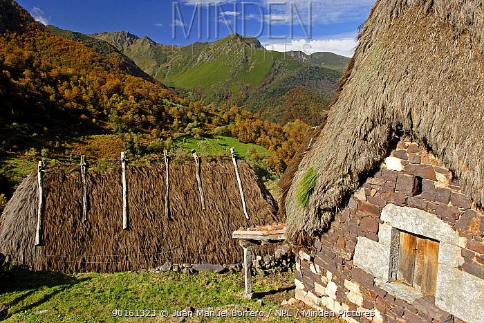 Traditional thatched houses, Bra?a la Pornacal, Pig?e?a valley, Somiedo NP  -  Juan Manuel Borrero/ npl