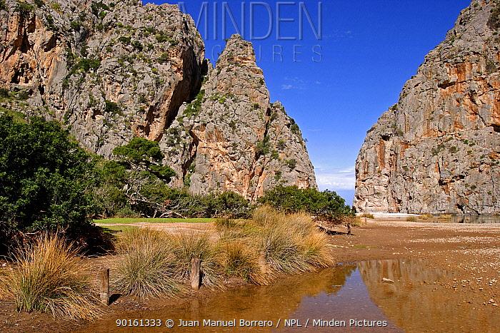 Pareis torrent Cala de sa Calobra Majorca, Balearic Is, Spain  -  Juan Manuel Borrero/ npl