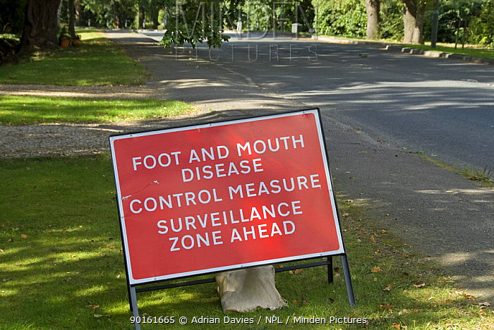 Roadside sign warning of Foot and Mouth Disease, Surrey, England, September, 2007  -  Adrian Davies/ npl
