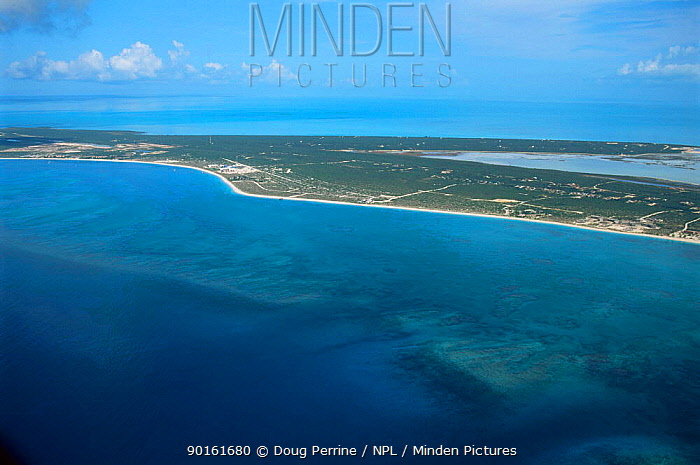 Aerial view of Grace Bay, Providenciales (Provo), Turks and Caicos Is, Caribbean Sea  -  Doug Perrine/ npl