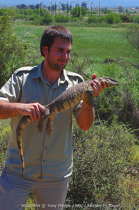 Minden Pictures Stock Photos Scientist Handling Southern Savanna