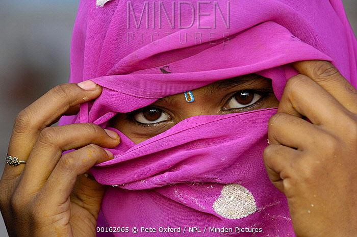 Hindu Woman looking out from inside her veil, (only married women wear veils) near Bharatpur Rajasthan, India 2006  -  Pete Oxford/ npl