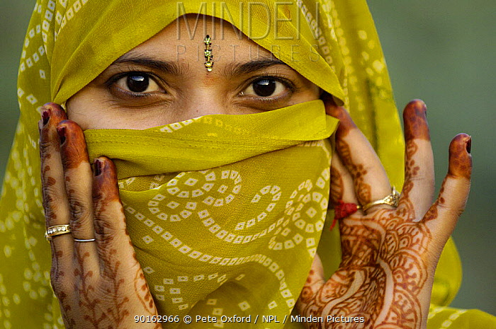 Hindu Woman looking out from inside her veil with hand tatoos painted for the Diwali festival, (only married women wear veils) near Bharatpur Rajasthan, India 2006,  -  Pete Oxford/ npl