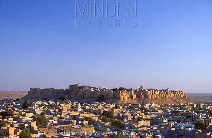 Jaisalmer Fort overlooking city landscape, on edge of Thar Desert, Rajasthan, India  -  Ingo Arndt/ npl
