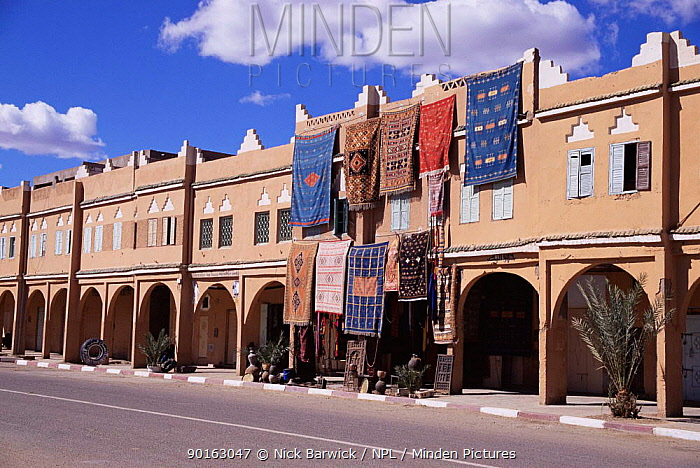 Traditional Moroccan rugs for sale, Zagora, Morocco, North Africa  -  Nick Barwick/ npl