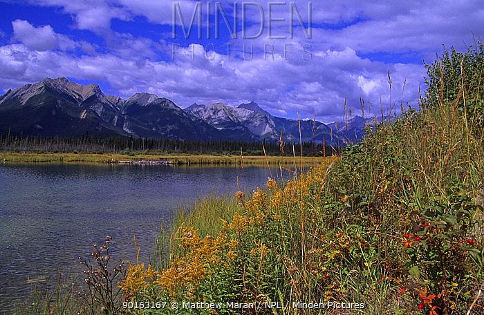 Snaring Range, Jasper National Park, Alberta, Canada  -  Matthew Maran/ npl