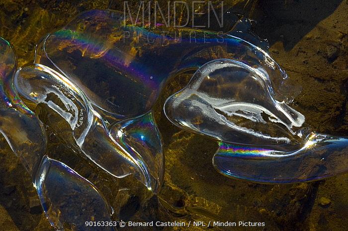 Ice pattern, Belgium  -  Bernard Castelein/ npl
