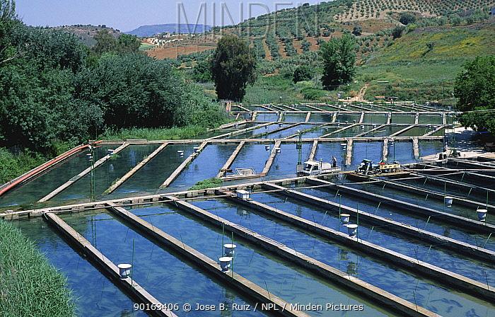 Freshwater fish farm, Granada, Spain  -  Jose B. Ruiz/ npl