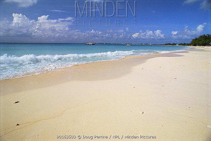 Seven Mile Beach, Grand Cayman Is, Cayman Island, Caribbean  -  Doug Perrine/ npl