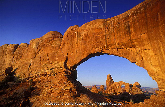 Window Arch, Arches National Park, Utah, USA  -  David Noton/ npl