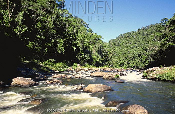 Namorana river and mid-altitude montane rainforest, Ranomafana National Park, Madagascar  -  Nick Garbutt/ npl