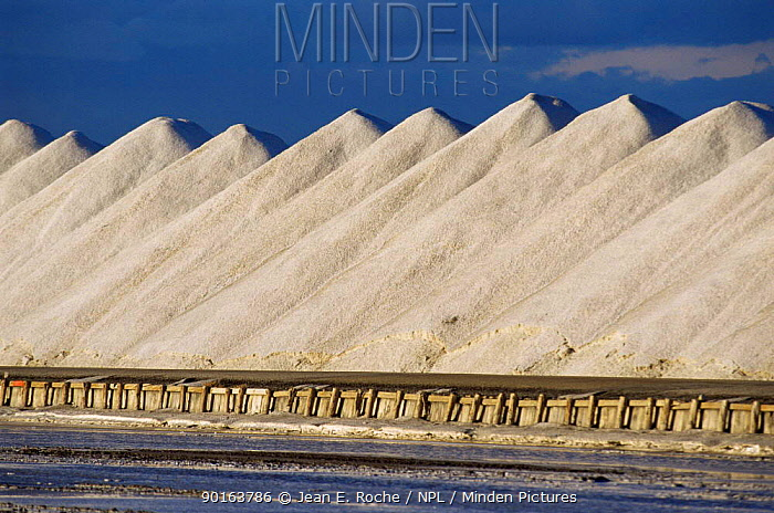 Salt stocks, Salin de Giraud, Camargue, France  -  Jean E. Roche/ npl