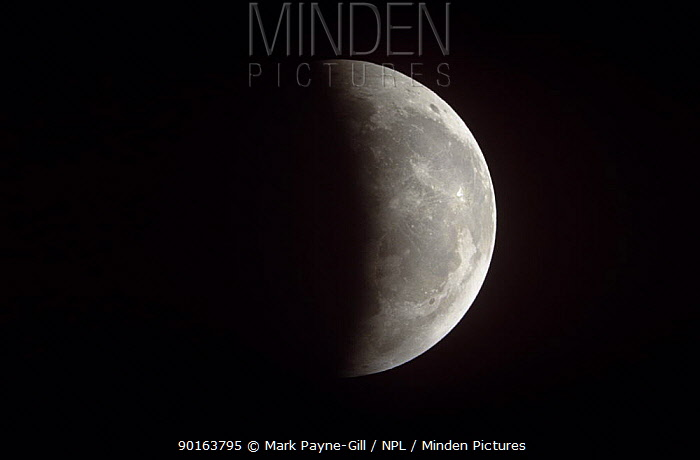 Partial eclipse of the Moon 9 January 2001 Worcestershire, UK  -  Mark Payne-Gill/ npl