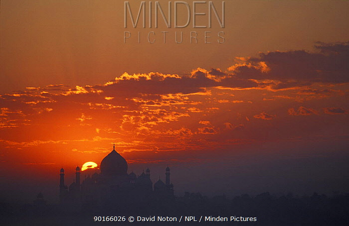 Sunrise over the Taj Mahal, Agra, India  -  David Noton/ npl