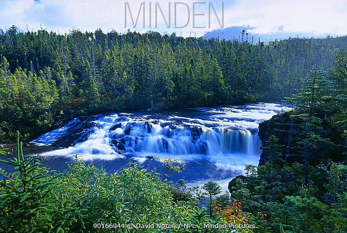 Baker's Brooks Falls, Gros Morne National Park, Newfoundland, Canada  -  David Noton/ npl