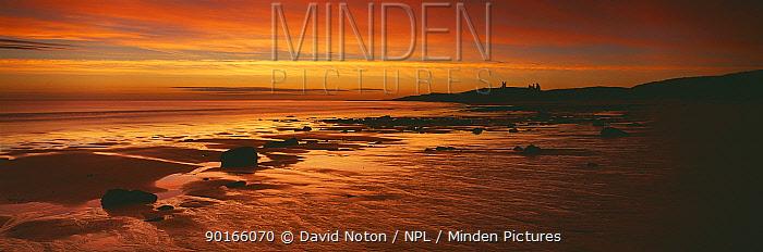 Dunstanburgh Castle and Embleton Beach at dawn, Northumbria, England, UK  -  David Noton/ npl