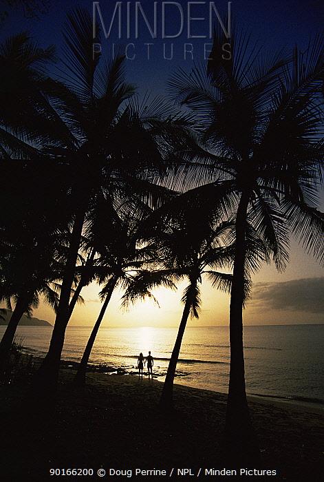 Silhouette of couple at tropical beach at sunset, St Croix, US Virgin Islands, Caribbean  -  Doug Perrine/ npl