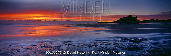 Dawn on the beach at Bamburgh Castle, Northumbria, England, UK  -  David Noton/ npl