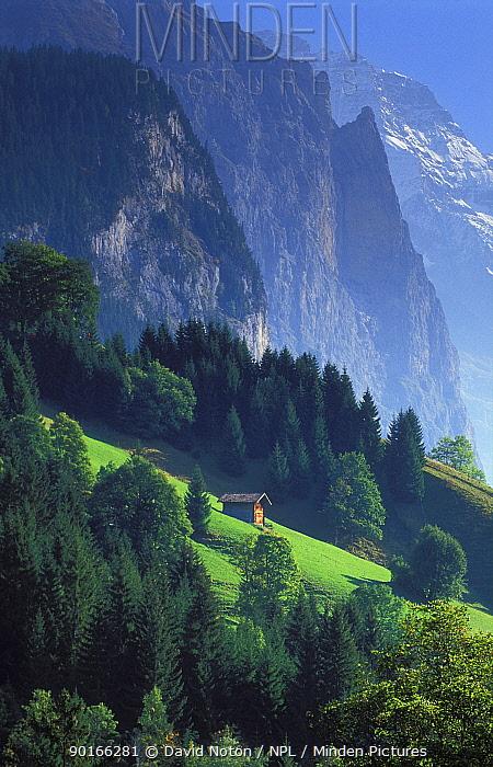 Alpine hut nr Wengen, Lauterbrunnen valley, Bernese Oberland, Switzerland  -  David Noton/ npl