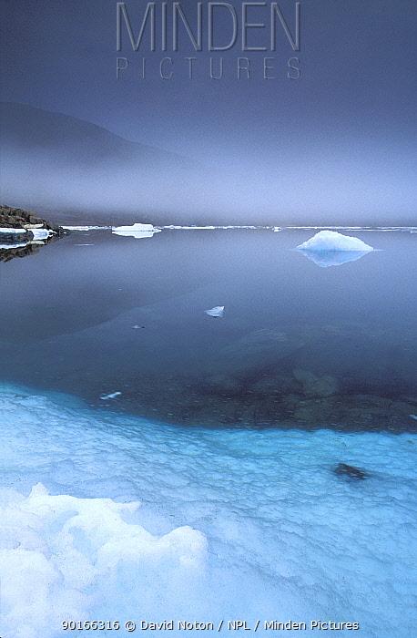 Alexandra Fjord, Ellesmere Island, Canadian Arctic  -  David Noton/ npl