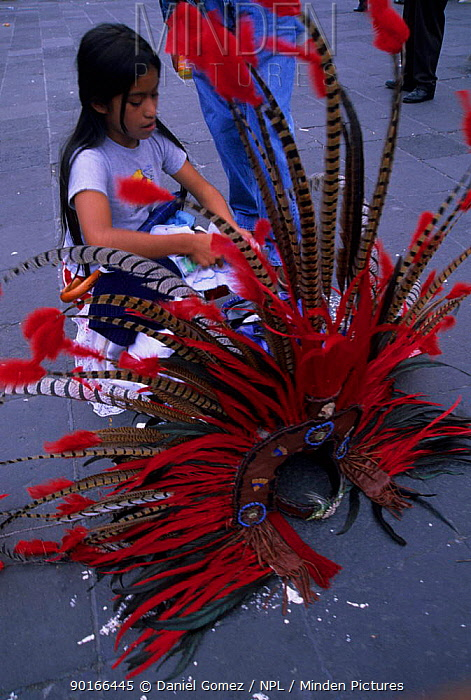 Preparing Aztec feather head-dresses for Independence Day in Mexico city  -  Daniel Gomez/ npl