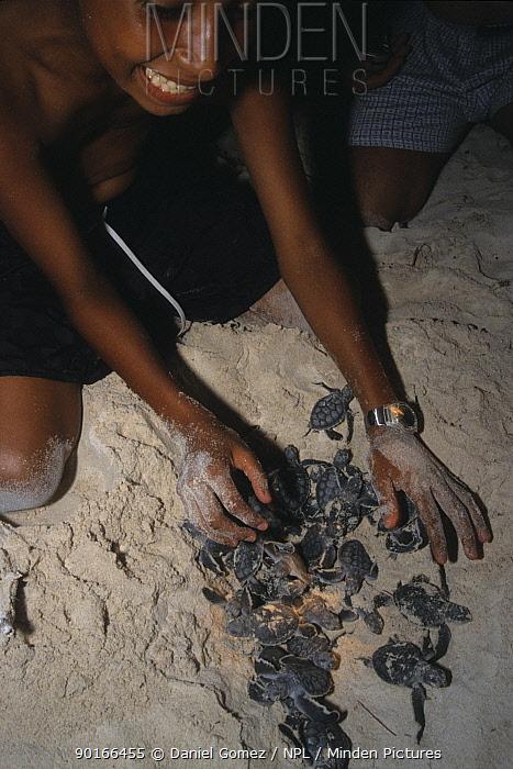 Boy with Sea turtle hatchlings, Sian Ka'an Biosphere Reserve Mexico  -  Daniel Gomez/ npl