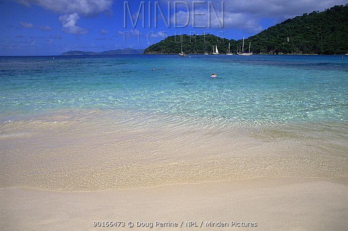 Hawksnest beach, St John, US Virgin Islands, Caribbean  -  Doug Perrine/ npl