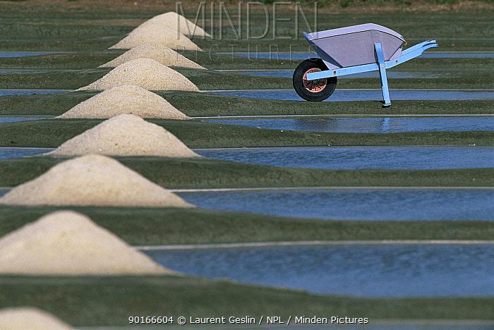 Piles of salt and wheelbarrow, Sea Salt production by evaporation, Guerande, France  -  Laurent Geslin/ npl