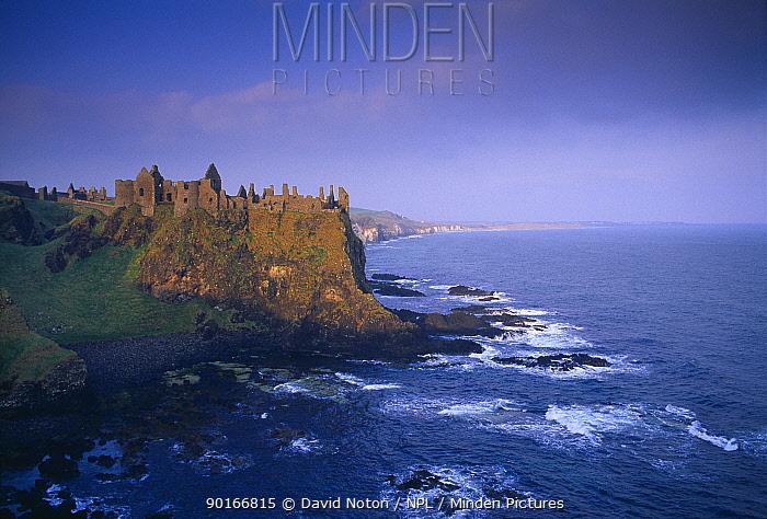 Ruins of Dunluce Castle, County Antrim, Northern Ireland, UK  -  David Noton/ npl