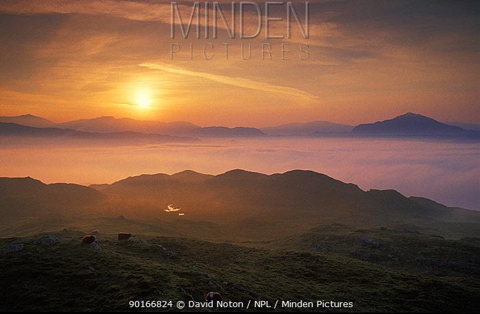 Misty Dawn over Eskdale, Lake District National Park, Cumbria, England, UK  -  David Noton/ npl