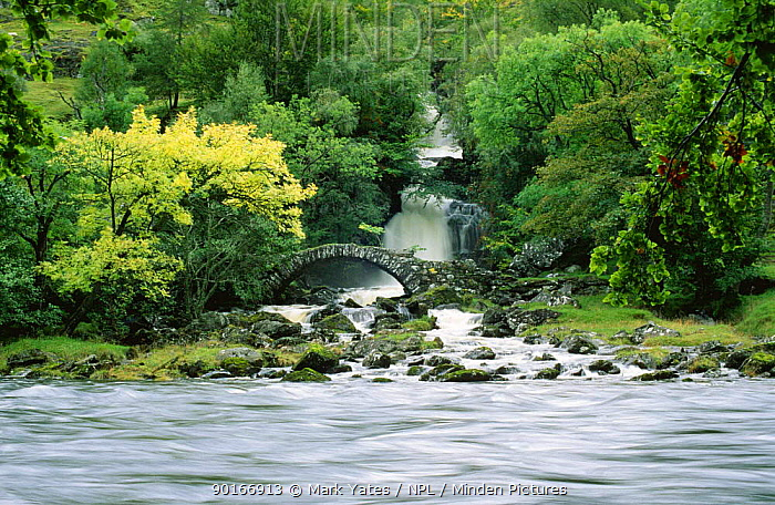 River flowing infront of Old bridge, Glen Lyon, Tayside, Scotland, UK  -  Mark Yates/ npl